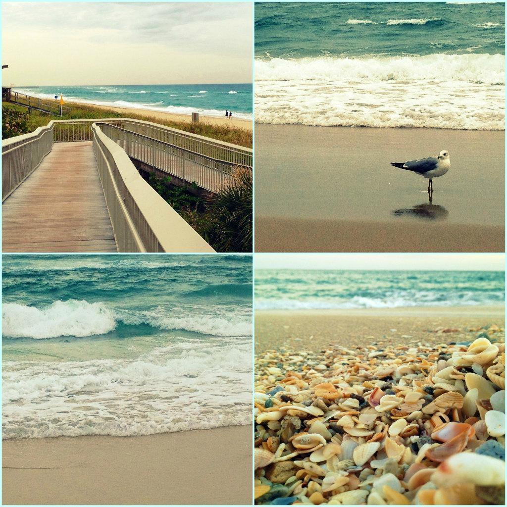 Beach Photography Set Of 4 Prints Turquoise Wall Art Prints Pertaining To Seashell Prints Wall Art (Image 5 of 20)