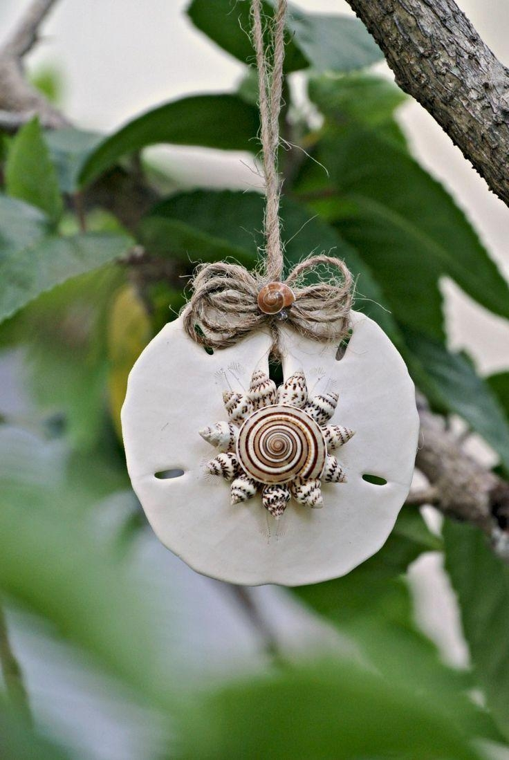 Best 25+ Conch Shells Ideas On Pinterest | Sea Shells, Shells And In Wall Art With Seashells (Image 3 of 20)