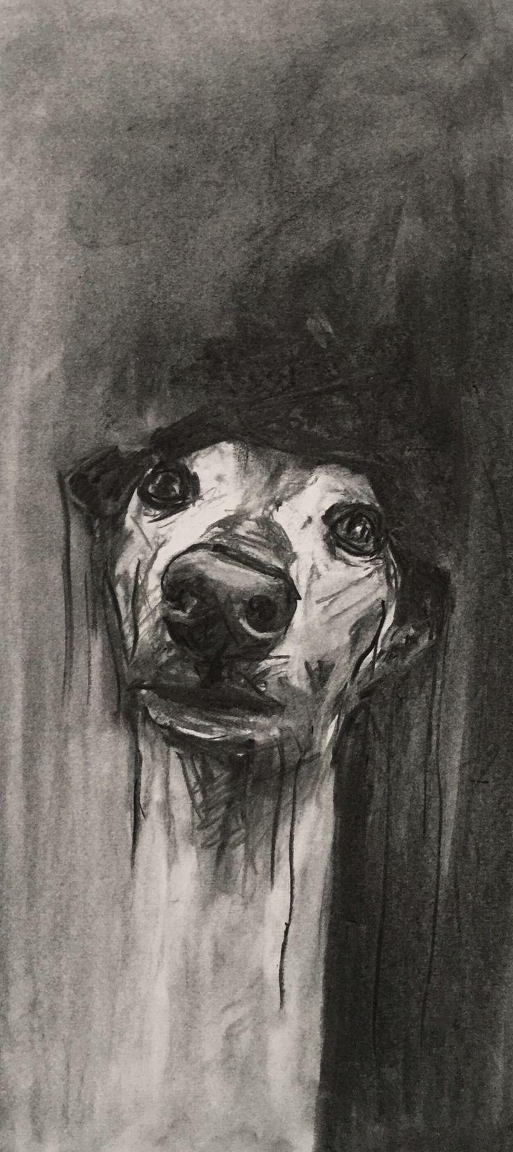 Best 25+ Greyhound Art Ideas On Pinterest   Greyhounds, Italian Pertaining To Italian Greyhound Wall Art (Image 8 of 20)