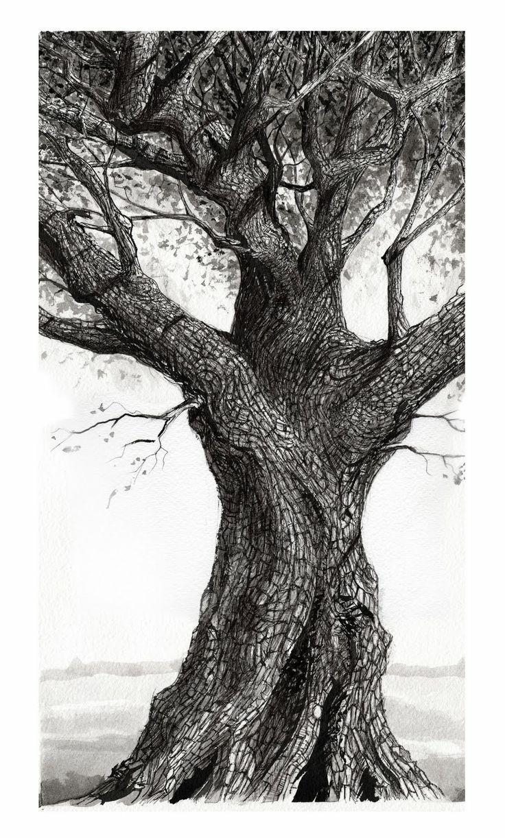 Best 25+ Oak Tree Drawings Ideas On Pinterest | Tree Tattoos, Tree With Regard To Live Oak Tree Wall Art (Image 5 of 20)