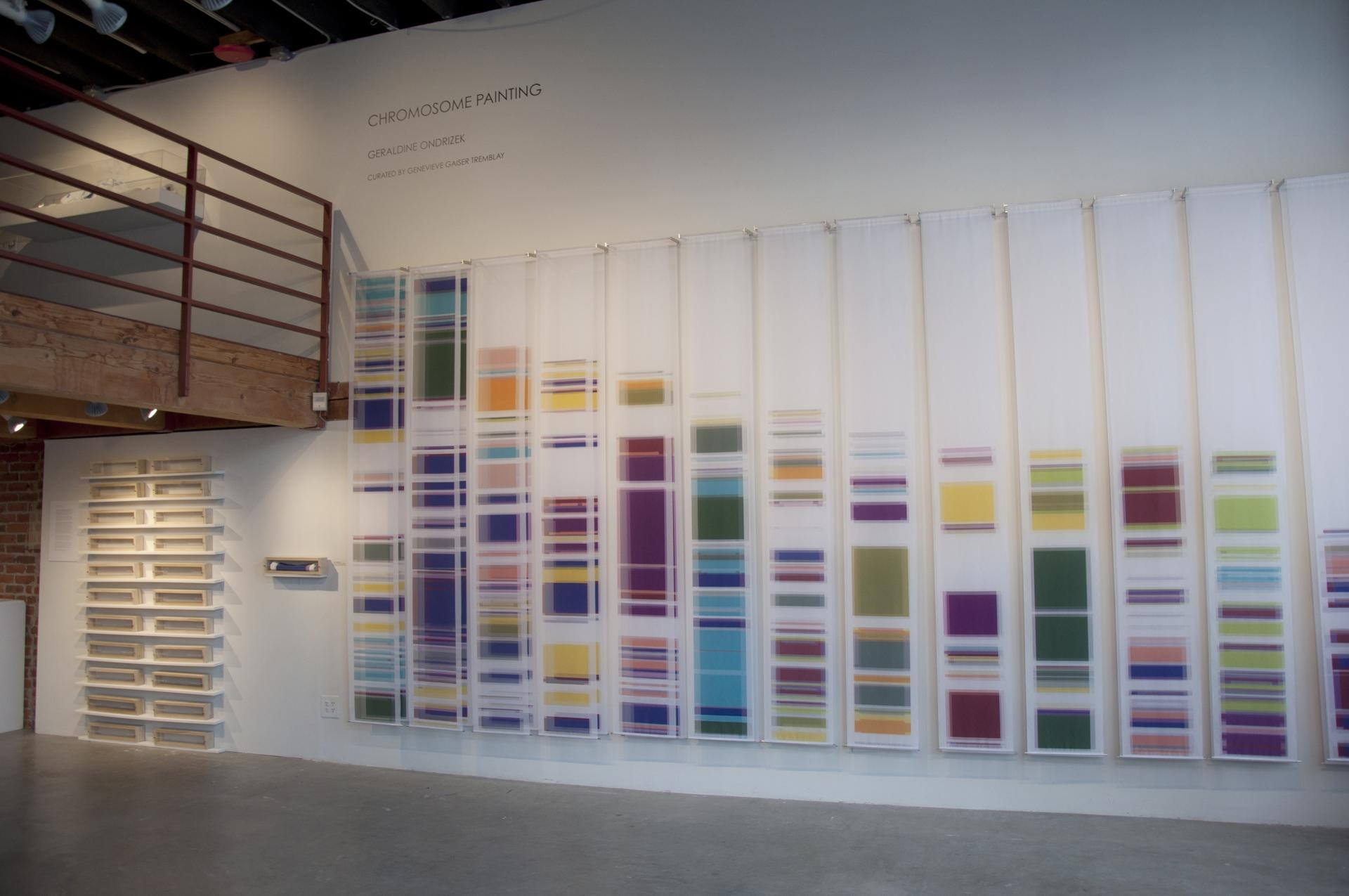 Chromosome Painting: Discovering Beauty In Dna | Uw News Within Dna Wall Art (Image 5 of 20)