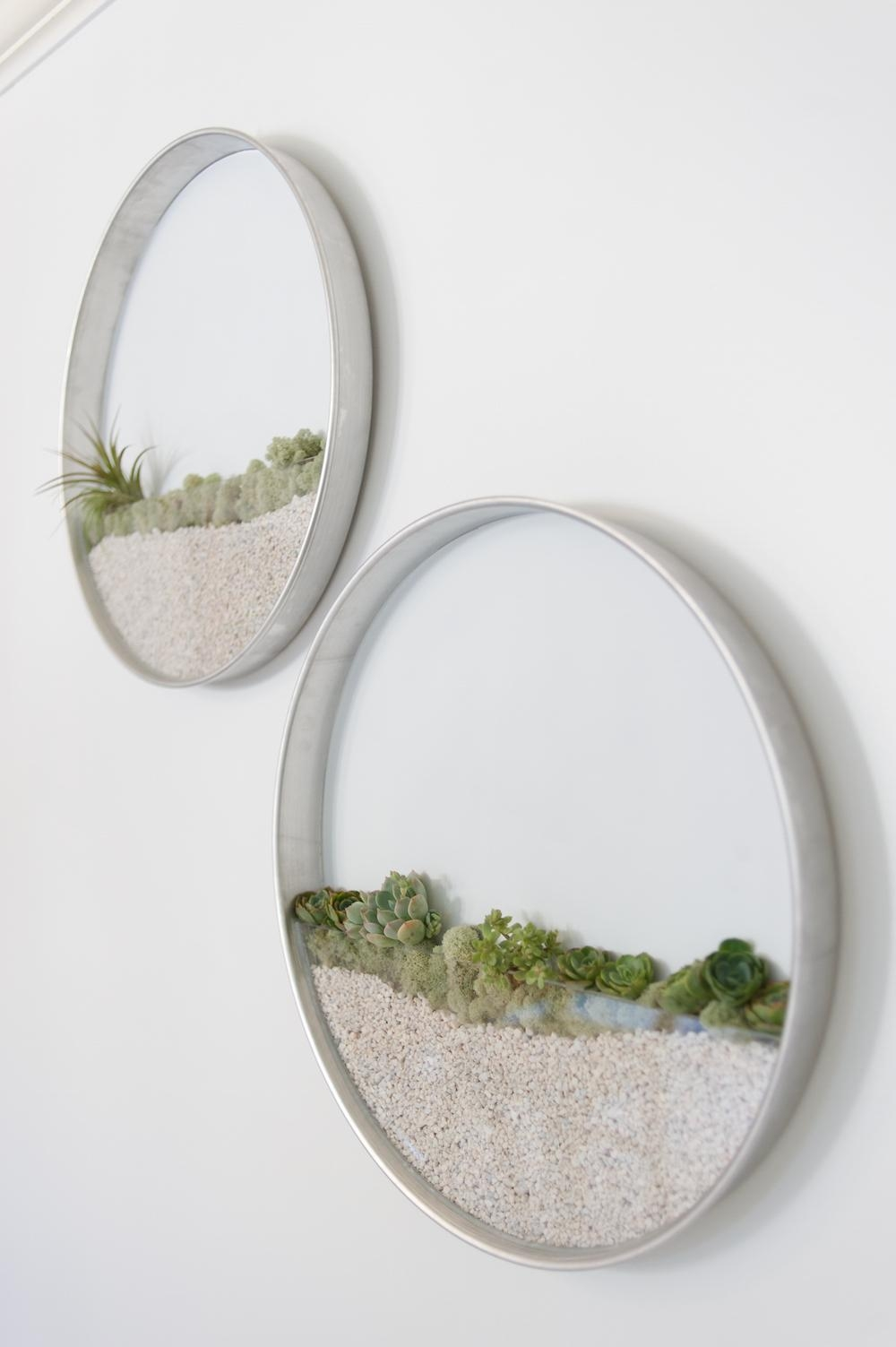Circular Framed Planters Add Living Art To Your Walls | Colossal With Regard To Air Plant Wall Art (Image 6 of 20)