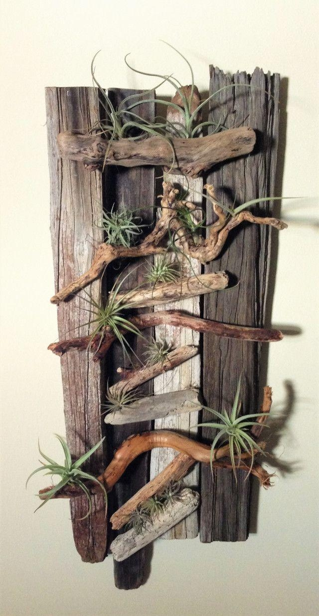 Danielle Pace Dyi Drift Wood And Air Plant Wall Art | Home Decor Pertaining To Air Plant Wall Art (Image 8 of 20)