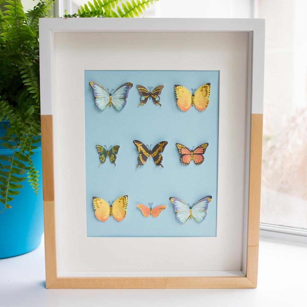 Diy Butterfly Specimen Wall Art | Design Improvised Intended For 3D Butterfly Framed Wall Art (View 13 of 20)