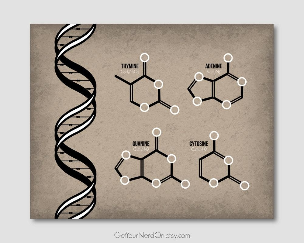 Dna Molecule Poster Science Teacher Gift Genetics Wall Art Within Dna Wall Art (View 17 of 20)