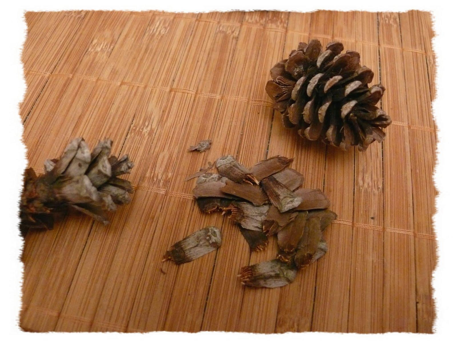 Easy Pine Cone Wall Art | Happy Hodgepodge Home Throughout Pine Cone Wall Art (Image 9 of 20)
