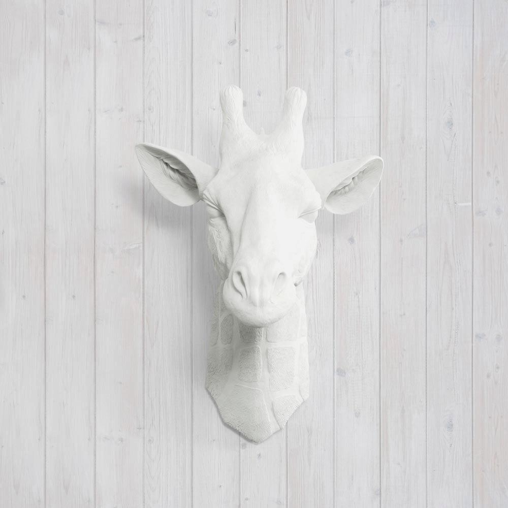 Faux White Giraffe Headwall Charmers™ Fake Ceramic Pertaining To Resin Animal Heads Wall Art (View 10 of 20)