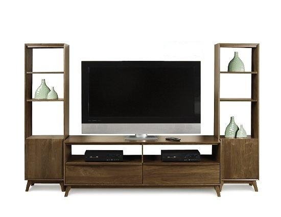 Furniture Catalina Tv Stand And Bookcases With Regard To Most Up To Date Tv Stands With Bookcases (Image 7 of 20)