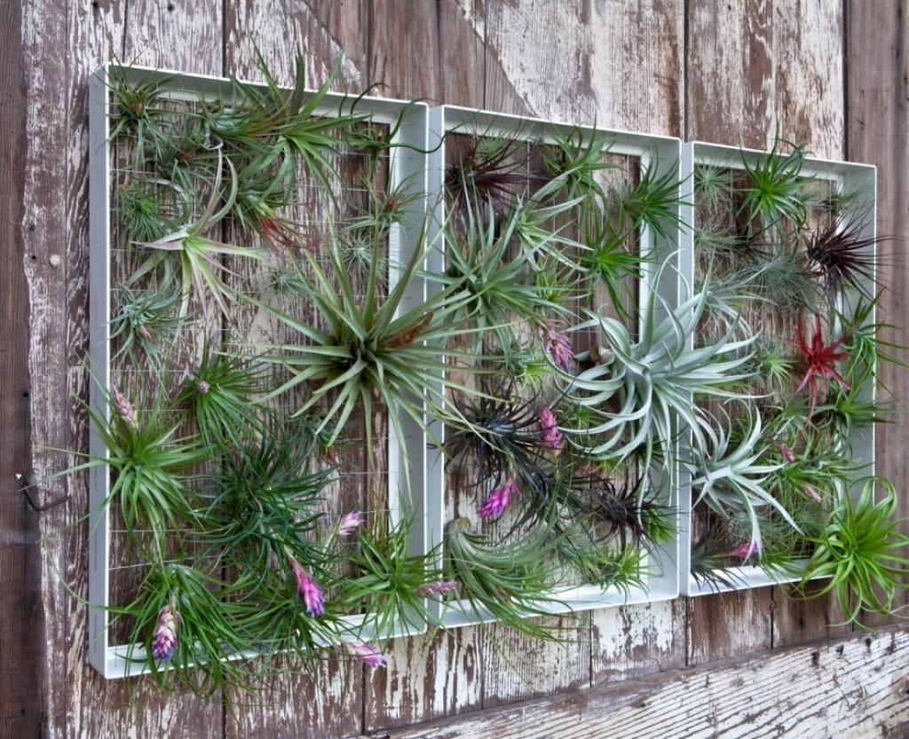 Garden Wall Decoration Ideas Garden Wall Art Mirrors Wilson Rose Pertaining To Outdoor Mirror Wall Art (Image 3 of 20)