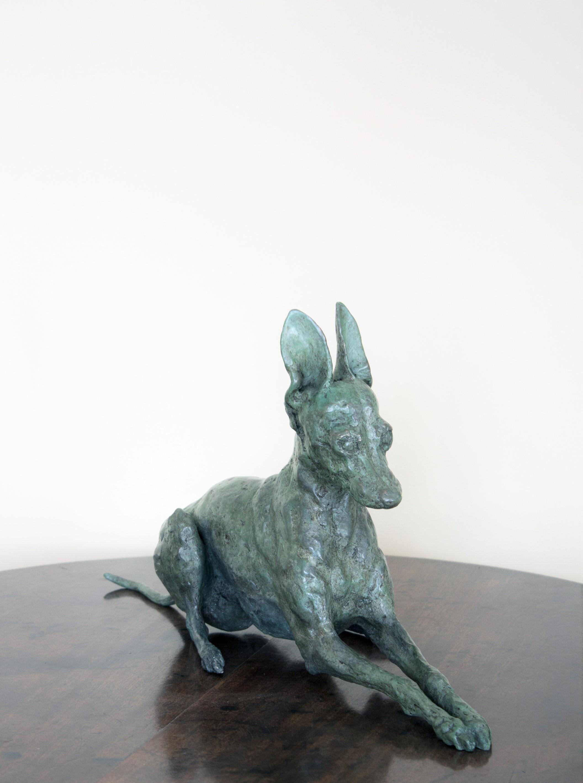 Italian Greyhound I, Ii, Iii (C (Image 14 of 20)