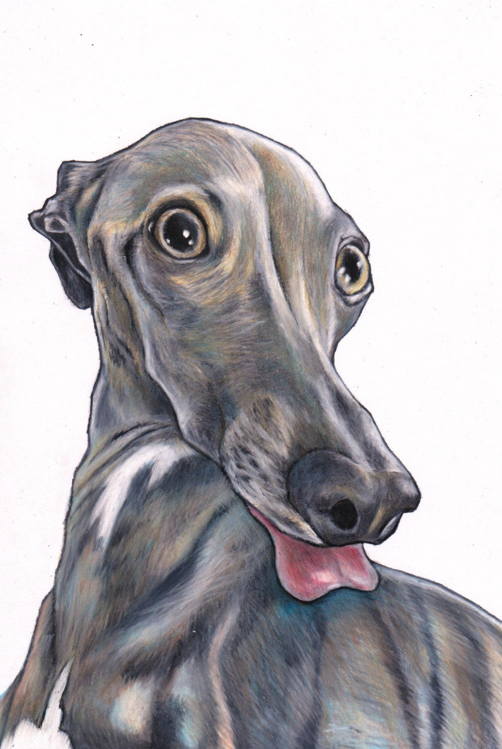 Italian Greyhound Print Iggy Art Print Signed Giclée Print With Italian Greyhound Wall Art (View 2 of 20)