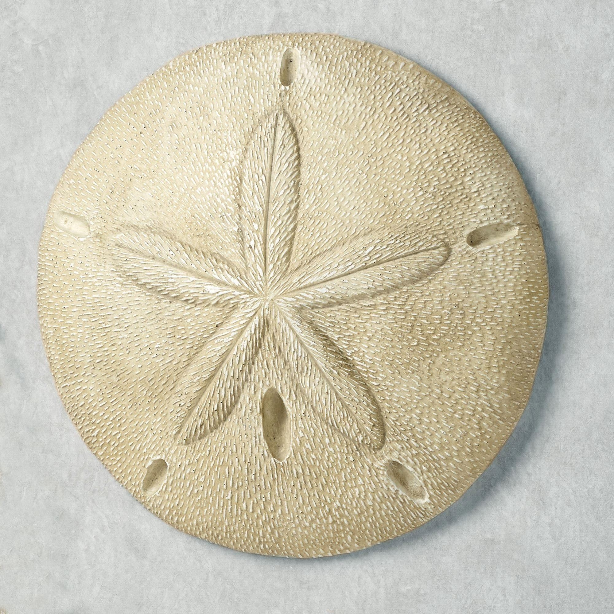 Mesmerizing Design Ideas Stencil Of Sand Dollar Sand Dollar Wall With Regard To Sand Dollar Wall Art (Image 7 of 20)