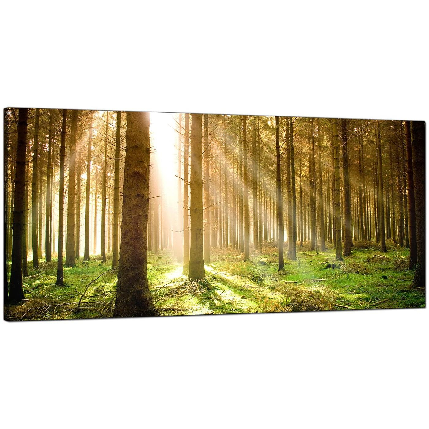 Modern Canvas Prints Of Forest Trees For Your Dining Room In Inexpensive Canvas Wall Art (Image 9 of 20)