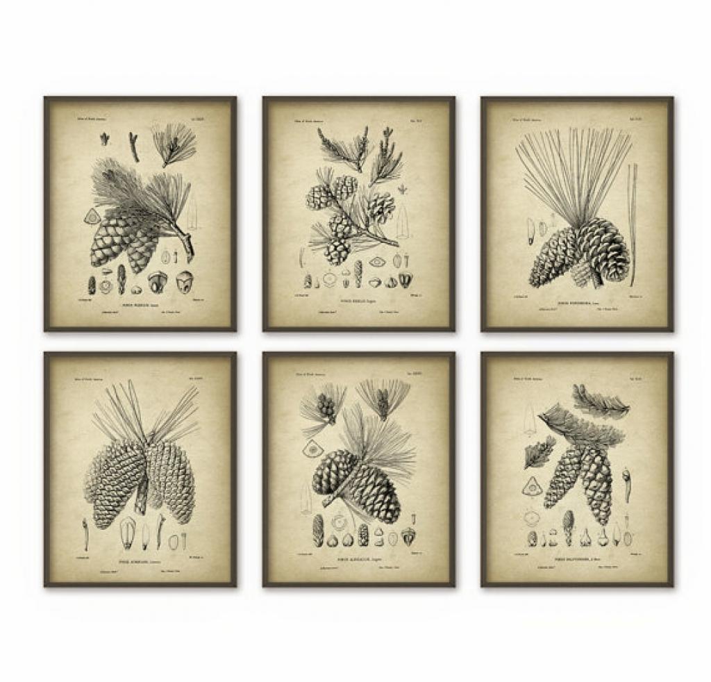 Pine Cones Wall Art Prints Set Of 6 Antique Quantumprints Pine For Pine Cone Wall Art (Image 15 of 20)