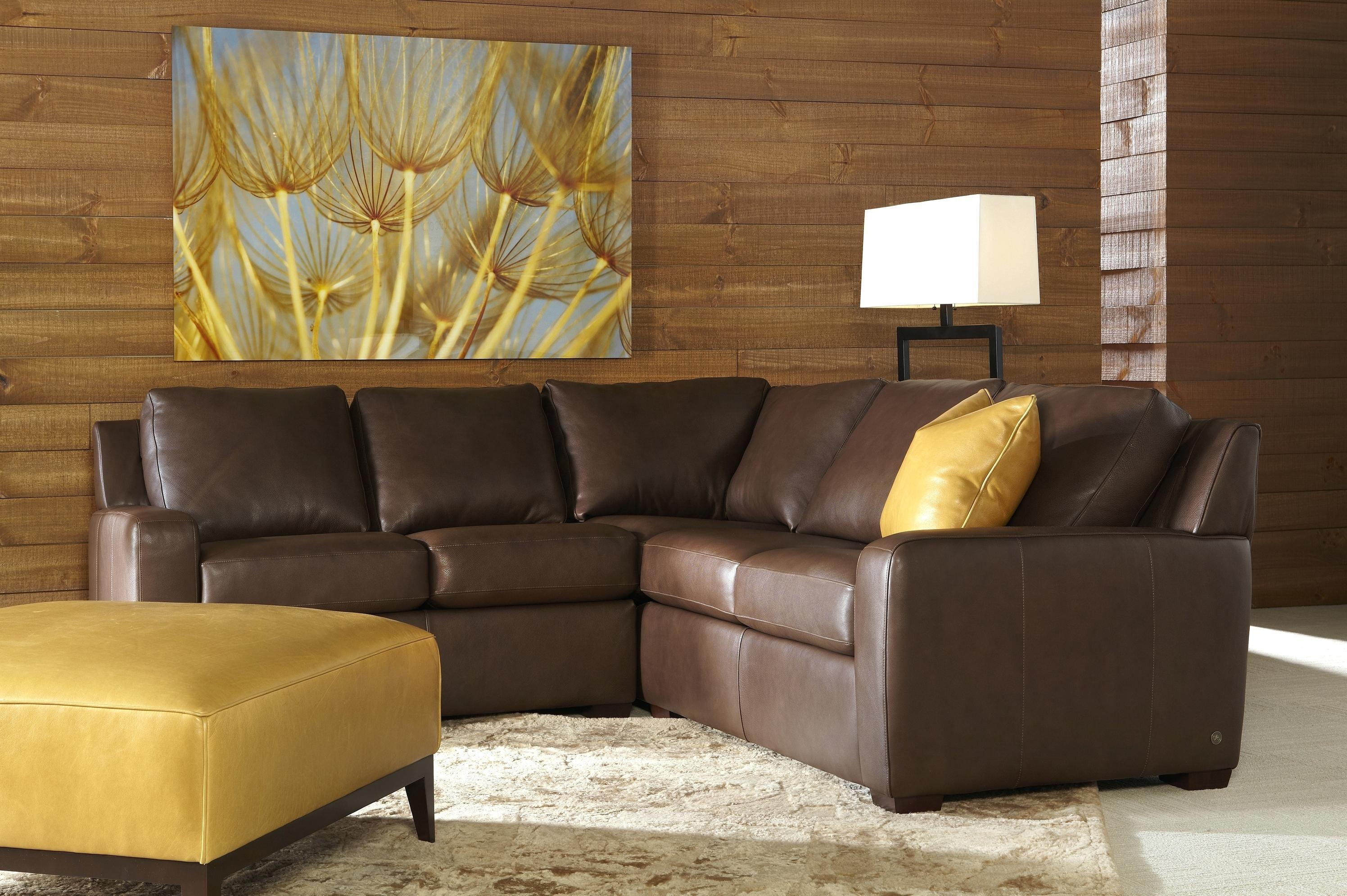 Sectional Sleeper Sofa For Small Spaces With Chaise Leather Within Leather Storage Sofas (View 18 of 21)