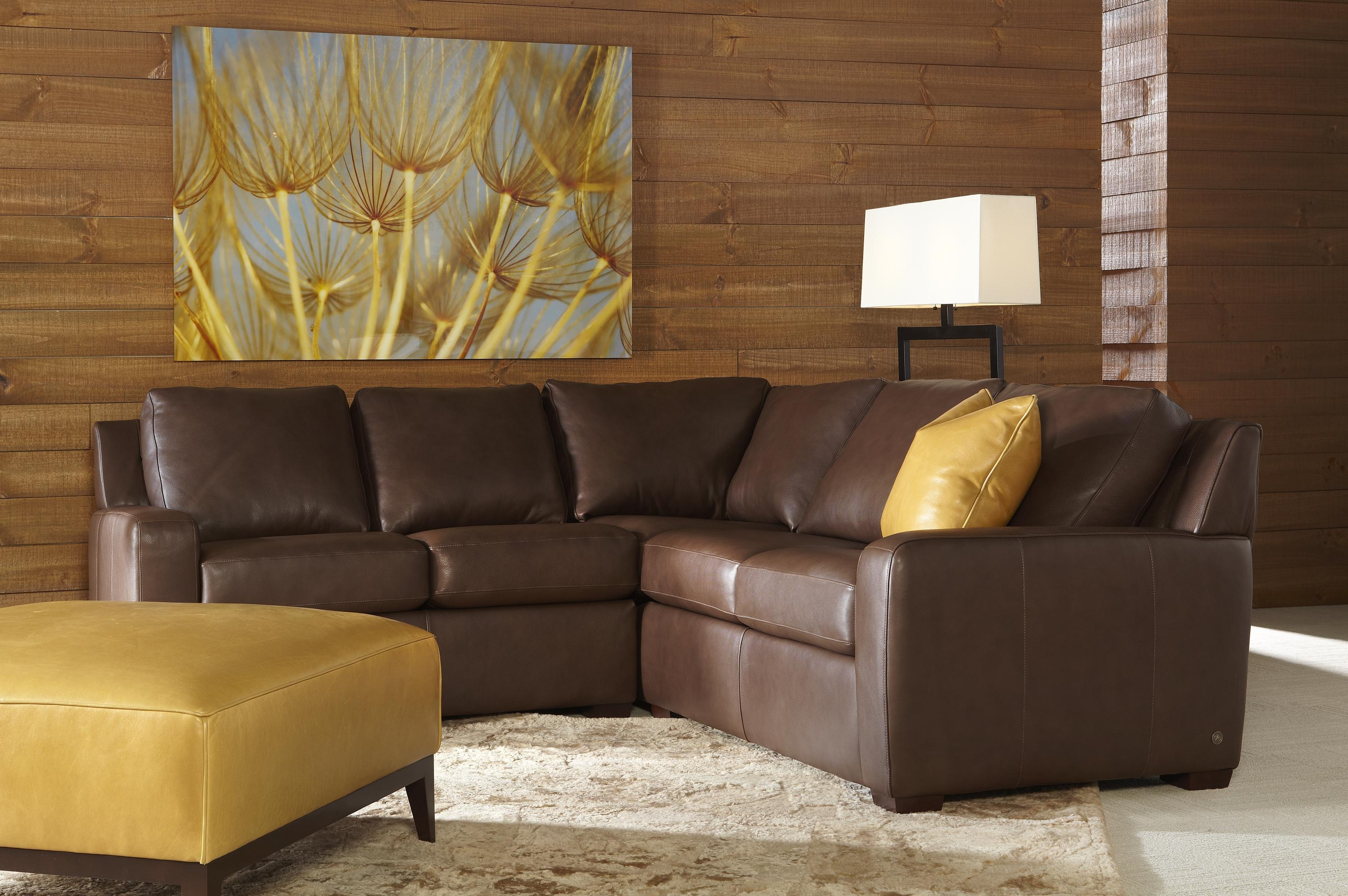 Sectional Sofas – Elegance And Style Tailored Just For Youand For American Sofa Beds (View 13 of 22)