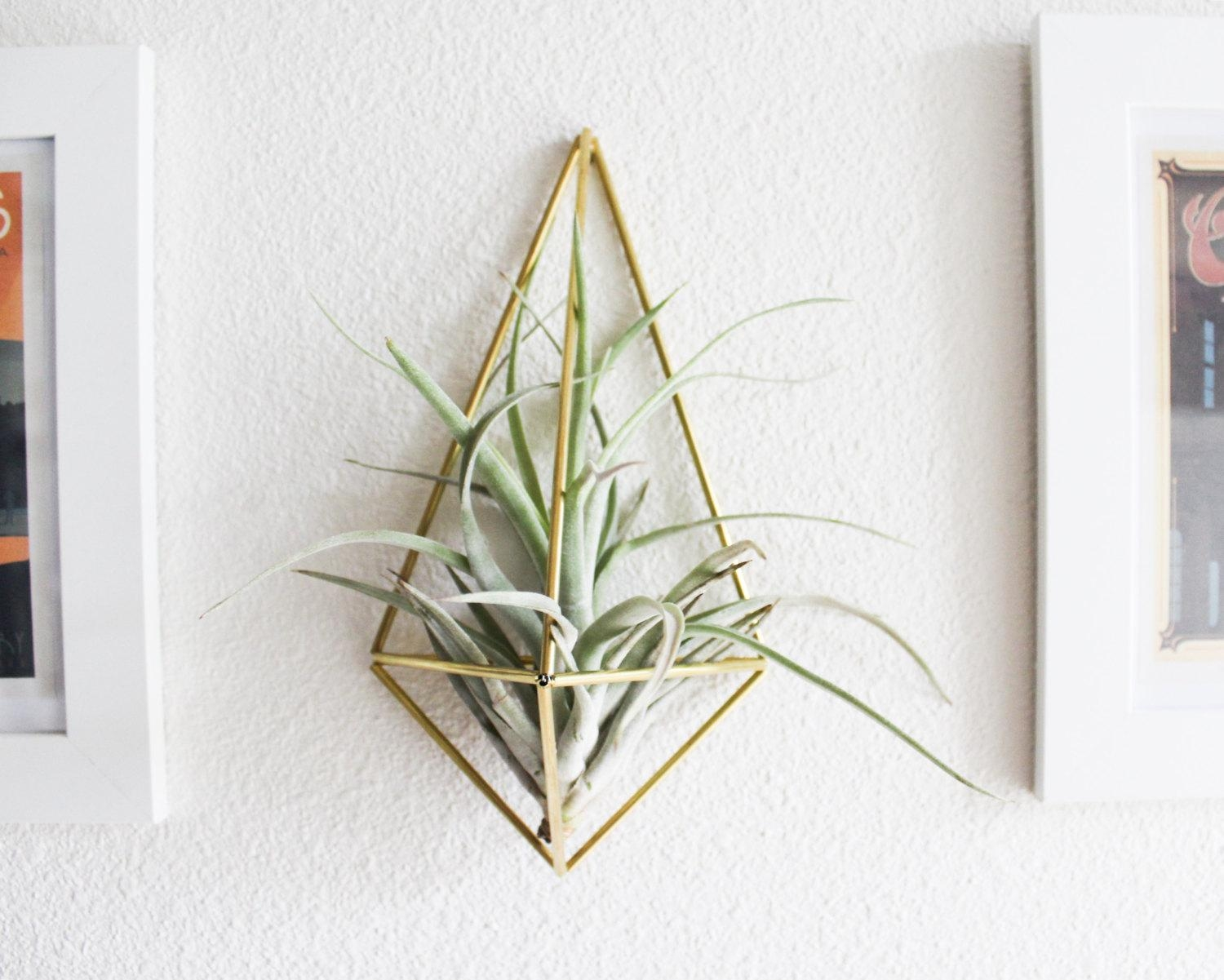 The Original Wall Sconce Brass Air Plant Holder Modern Throughout Air Plant Wall Art (View 2 of 20)