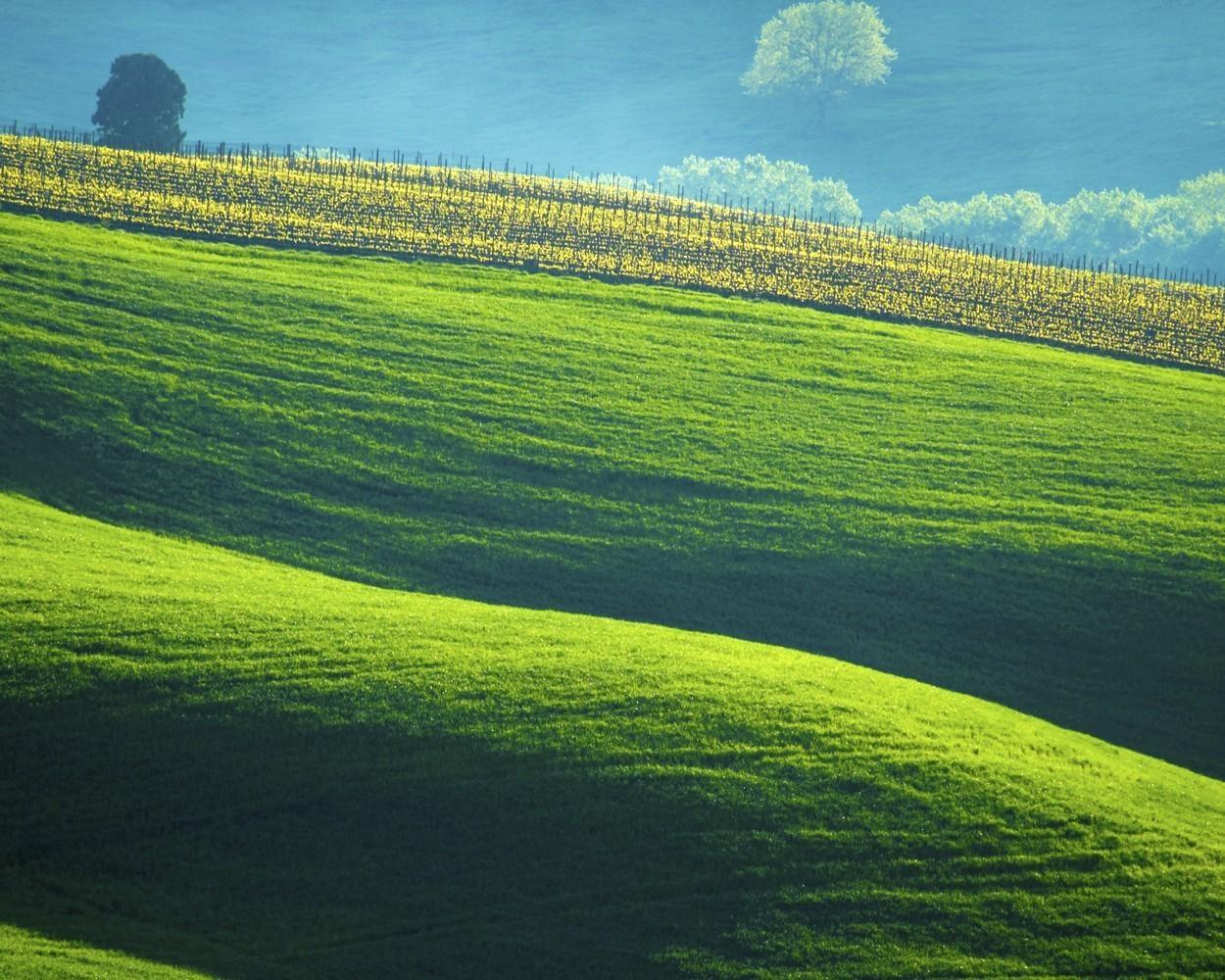 Tuscany Landscape Italy Photography Italian Countryside Inside Italian Countryside Wall Art (View 19 of 20)