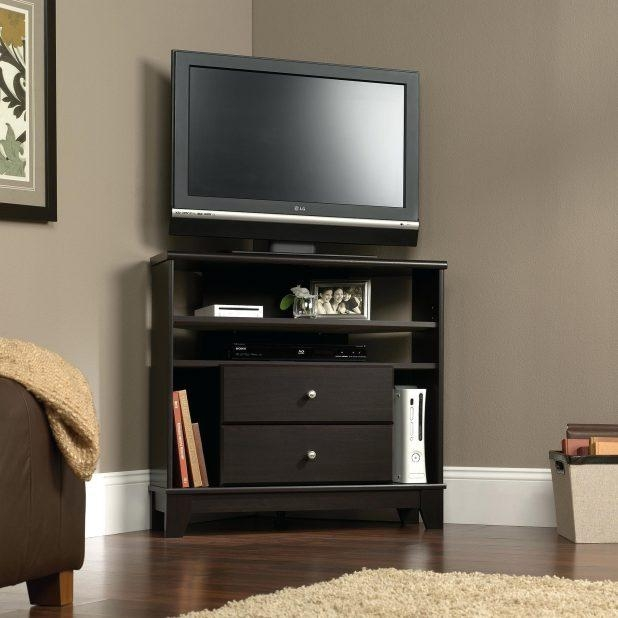 Tv Stand : Fascinating Corner Fireplace With Tv Stand Corner Pertaining To Most Popular 24 Inch Corner Tv Stands (Image 15 of 20)