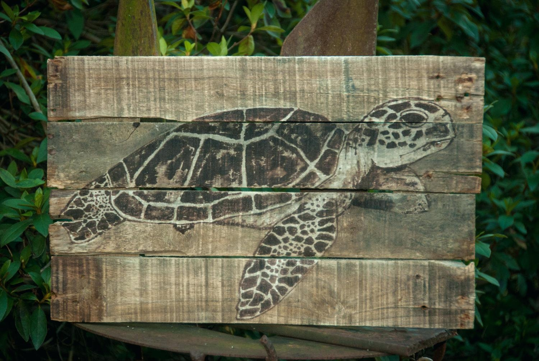Wall Ideas : Metal Sea Turtle Wall Art Aluminum Sea Turtle Outdoor Pertaining To Outdoor Metal Turtle Wall Art (Image 13 of 20)
