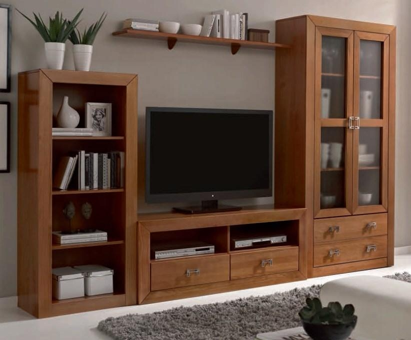 Wall Units: Amazing Tv Cabinet And Bookcase Bookcase Tv Cabinet With Regard To Recent Glass Tv Cabinets With Doors (Image 19 of 20)