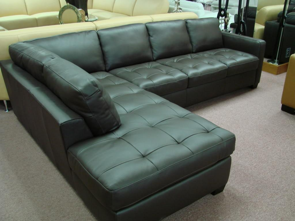 White Rustic Sectional Sleeper Sofa : New Lighting – Decorate Regarding Black Leather Sectional Sleeper Sofas (Image 21 of 21)