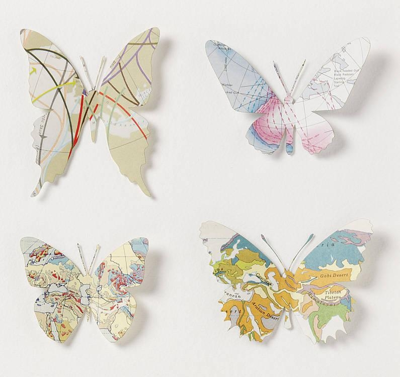 Nine Map Location Butterfly Wall Artbombus For Butterfly Map Wall Art (Image 15 of 20)