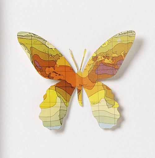 Nine Map Location Butterfly Wall Artbombus Within Butterfly Map Wall Art (Image 16 of 20)
