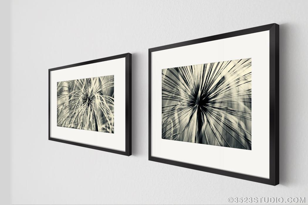 Flower Power Wall Art Collection – Matching Art Set 2 Piece Wall Regarding Framed Abstract Wall Art (Image 11 of 20)