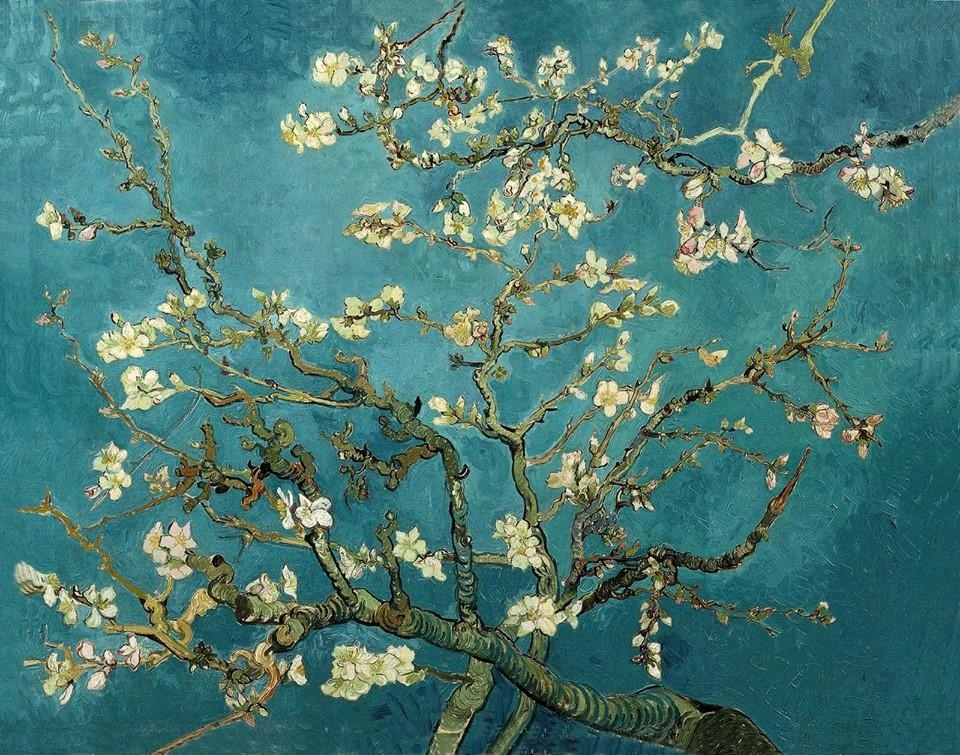 Van Gogh, Almond Blossom, February 1890. Oil On Canvas, (View 17 of 20)