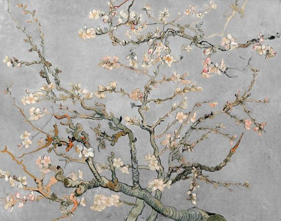 Vincent Van Gogh Almond Blossoms In Grey Gray 1890 Hd Canvas For Almond Blossoms Vincent Van Gogh Wall Art (View 5 of 20)