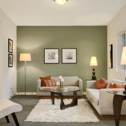 15 Contemporary Grey And Green Living Room Designs | Green Accent Intended For Wall Colors And Accents (Image 1 of 15)