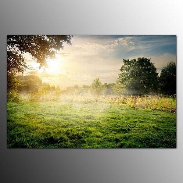 2017 Latest Design Framed Art Prints On Canvas Fog On Grassland intended for Los Angeles Framed Art Prints