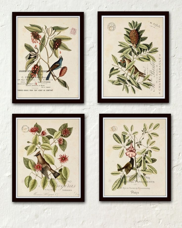 27 Best Print Sets Images On Pinterest   Botanical Prints Pertaining To Birds Framed Art Prints (Image 2 of 15)