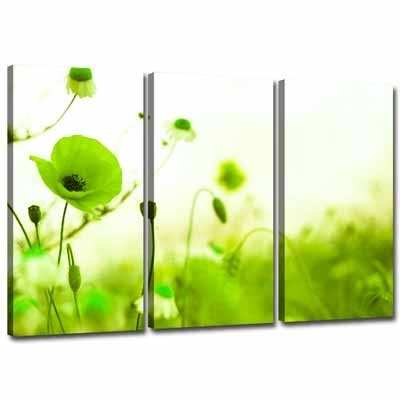 3 Green Canvas Wall Decor | Lime Green Canvas Wall Art 3 Pictures For Lime Green Abstract Wall Art (Image 2 of 15)