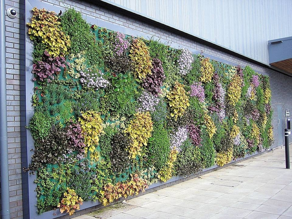 Amazing Of Outdoor Garden Wall Decor Outdoor Wall Decorations Inside Garden Wall Accents (Image 1 of 15)