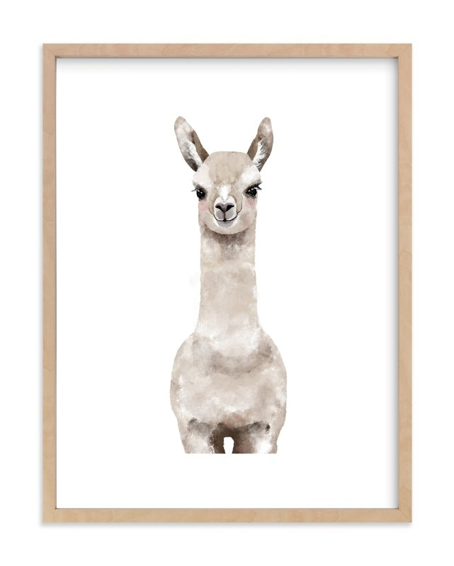 Baby Animal Llama Wall Art Printscass Loh | Minted Within Framed Animal Art Prints (Image 3 of 15)