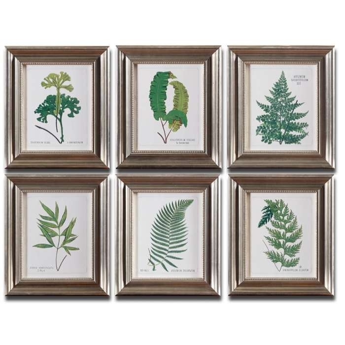 Botanical Prints – Ferns (Set Of 6) | The Woodhouse Vintage Market In Framed Botanical Art Prints (Image 4 of 15)