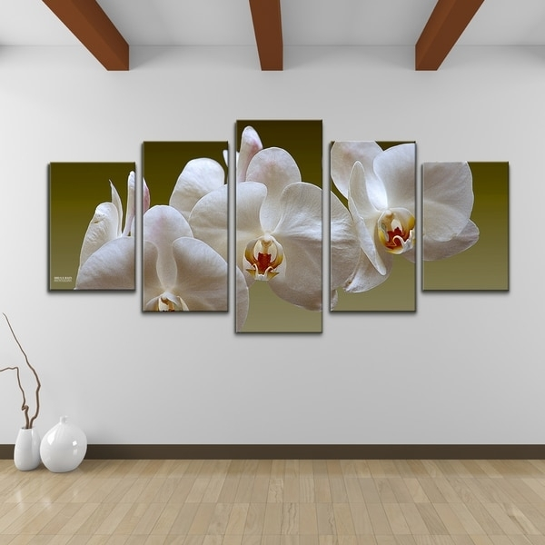 Bruce Bain 'white Orchid' 5 Piece Set Canvas Wall Art – Free In Orchid Canvas Wall Art (Image 6 of 15)