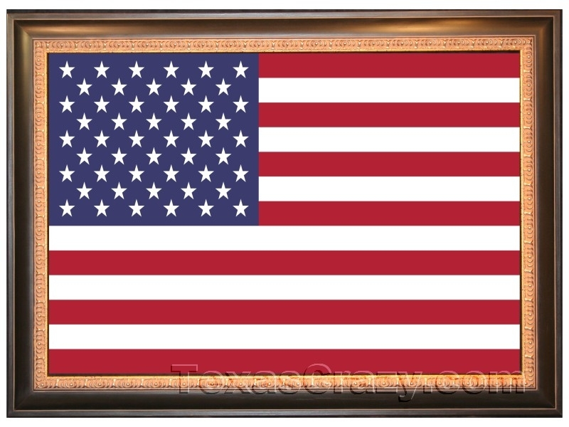 Buy Usa American Flags Framed – 2 X 3 And 3 X 5 Foot For American Flag Fabric Wall Art (Image 7 of 15)