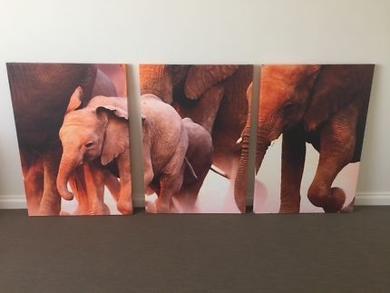 Canvas Prints In Mandurah Area, Wa   Gumtree Australia Free Local Throughout Mandurah Canvas Wall Art (Image 2 of 15)