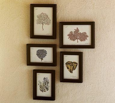 Coral Prints, Set Of 5 – Pottery Barn With Framed Art Prints Sets (View 7 of 15)