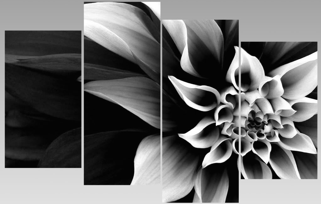 Extra Large Abstract Black & White Flower Canvas Wall Art Multi Regarding Black And White Photography Canvas Wall Art (Image 6 of 15)