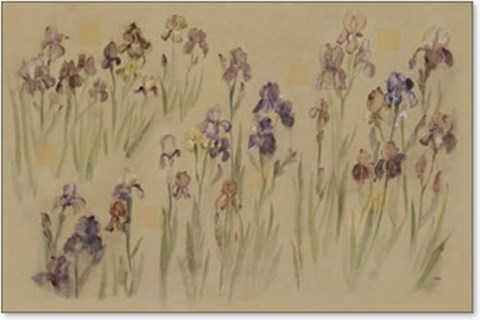 Field Of Iris Fine Art Printcheri Blum At Fulcrumgallery Intended For Cheri Blum Framed Art Prints (View 6 of 15)