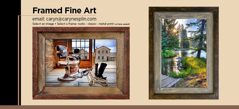 Fine Art Prints For Home Or Office | Caryn Esplin | Fine Art Regarding Framed Fine Art Prints (View 15 of 15)