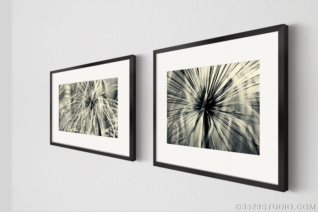 Flower Power Wall Art Collection – Matching Art Set 2 Piece Wall In Black And White Framed Art Prints (View 3 of 15)