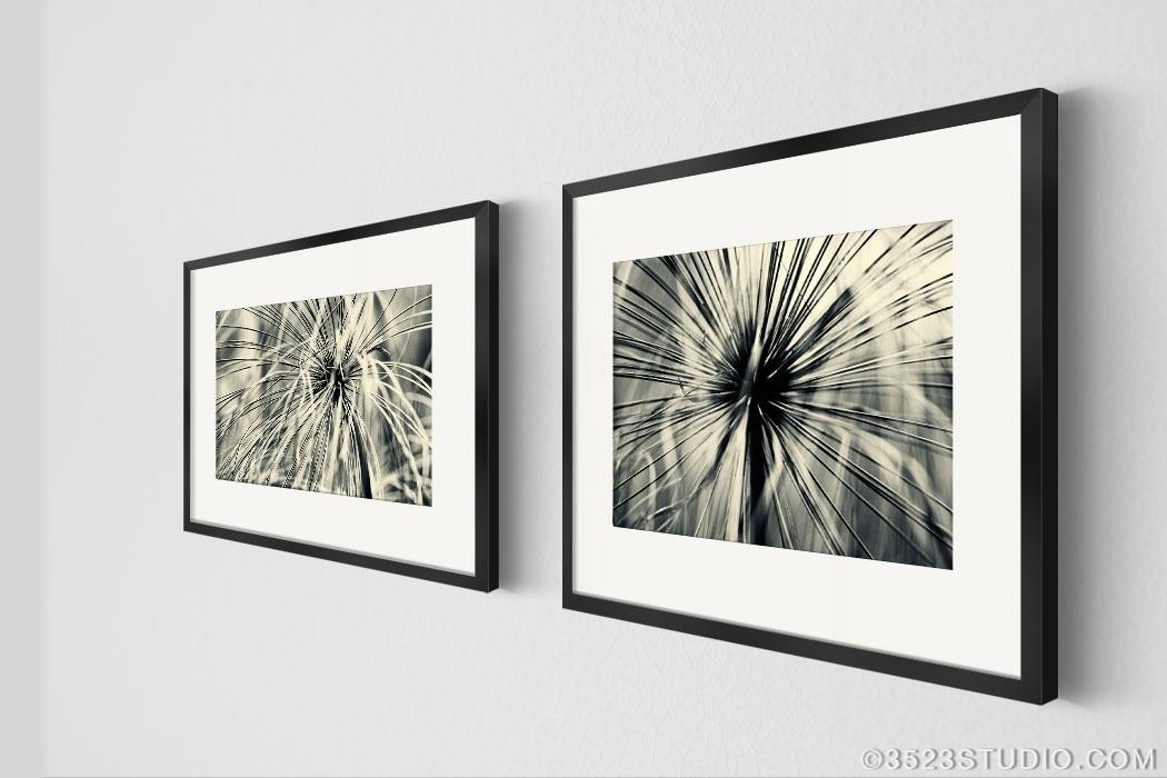 Flower Power Wall Art Collection – Matching Art Set 2 Piece Wall Throughout Black Framed Art Prints (View 3 of 15)