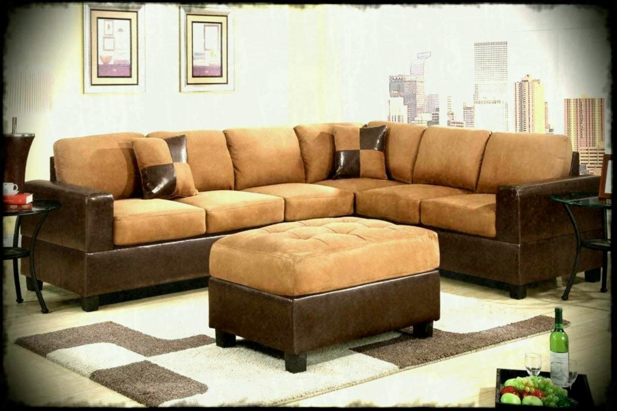 Furniture Couches Sleeper Sectional Sofa Big Lots Sofas And Roanoke Regarding Roanoke Va Sectional Sofas (View 6 of 10)