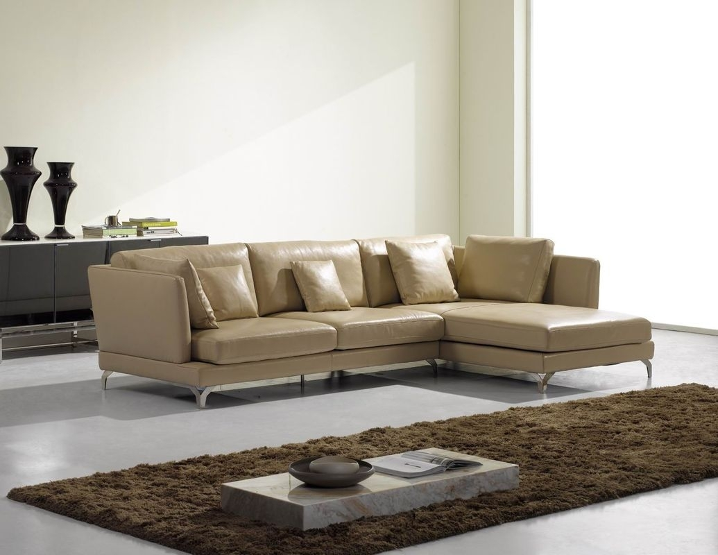 High End Sectional Sofas – Tourdecarroll Intended For High End Sectional Sofas (Image 6 of 10)
