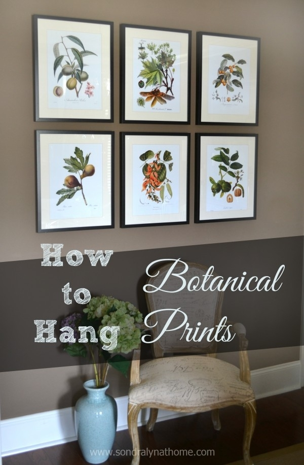 How To Hang Botanical Prints | Prints, Walls And Decorating Intended For Framed Botanical Art Prints (Image 7 of 15)